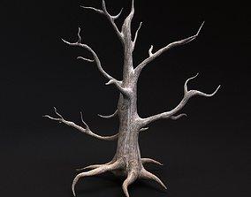other Desert tree 3D model