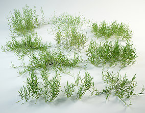 Grass set 3D model