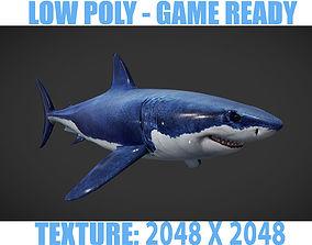 3D model realtime Shark