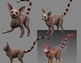3D model lemur