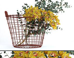 3D Plants in basket
