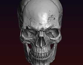 styled Skull detailed 3D printable model