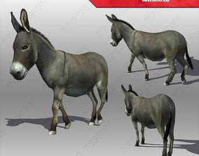 Donkey Animated 3D model VR / AR ready