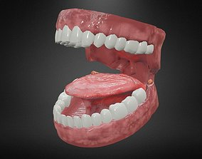 Teeth and Tongue 3D