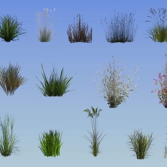 20 lowpoly grass