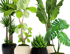 Collection plants 3D model set