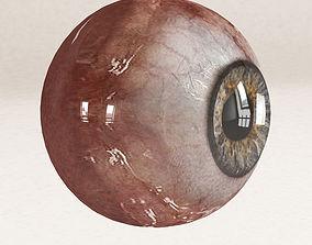 3D model Eye human