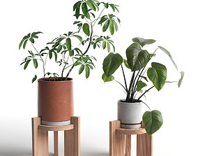 3D Pots with Plants 2