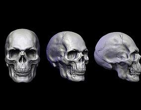 Skull Head cranium 3D print model