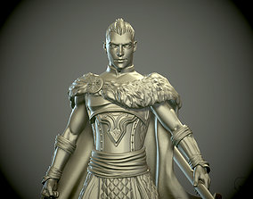 Young man Warrior or Paladin pathfinder 3D print model