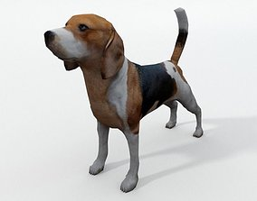 3D model Beagle Dog