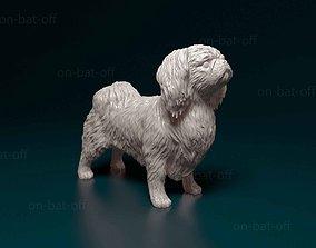 Pekingese dog 3D printable model