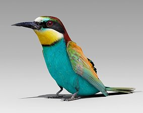 3D model Bee-eater animated