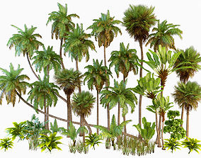 Palm trees Tropical 3D model