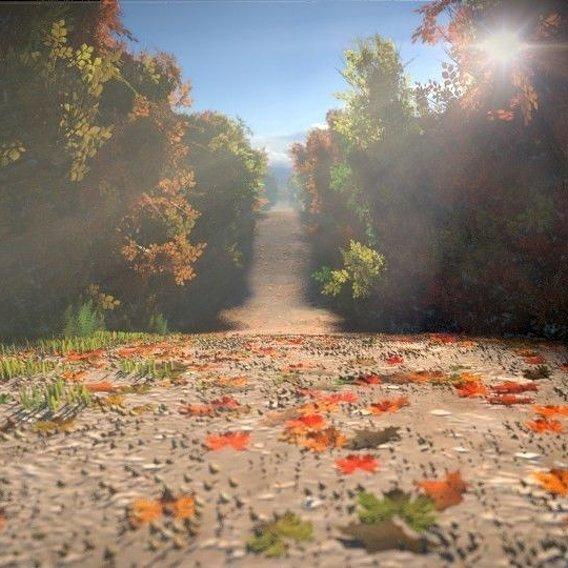 Beautiful Fall Road