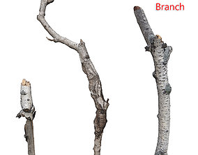 3D model realtime Branches