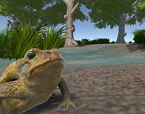 3D model PBR Toad Animated