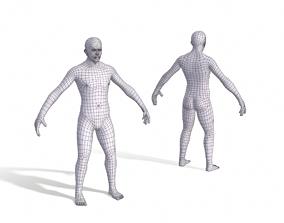3D model Human Body Base Mesh