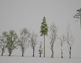 3D asset Several Trees Suitable for Large Area Placement