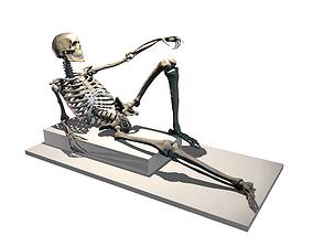Poseable Skeleton 3D printable model medicine