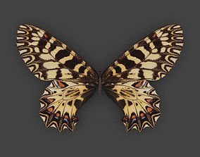 BFLY-001 Butterfly 3D model