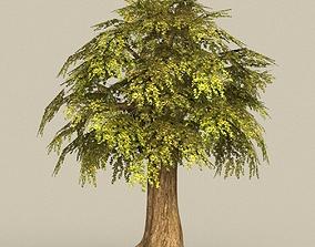 3D model Game Ready Tree 15