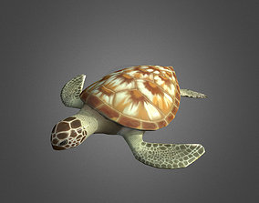3D model animated Low Poly Green Sea Turtle