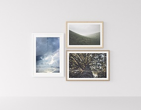 3D Picture Frames Nature II