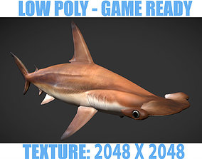 hammerhead sharks 3D asset