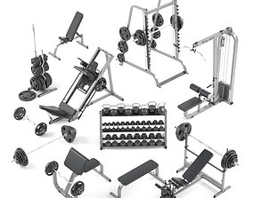 Large set for the gym by Bodysolid 3D