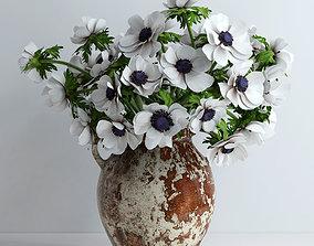Anemones white 3D model
