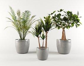 3D asset Vase Pack 1