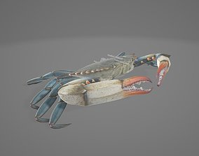 Crab Organ 3D asset
