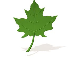 3D model Maple Leaf cartoon