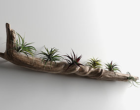 Driftwood with Plants 3D model