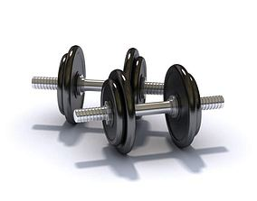Black And Grey Sport Weights 3D model