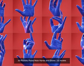 25 Realistic Posed Male Hands and Gloves 3D model