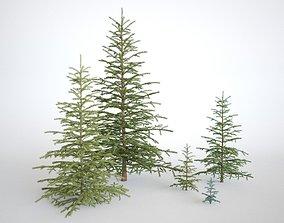 Pinetree Small 3D