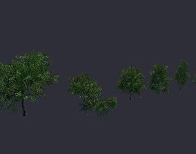 3D model game-ready Tree LowPoly