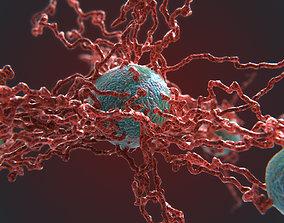 3D model Cancer Growth 4 PBR