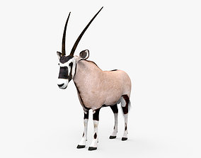 3D Oryx HD