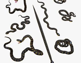game-ready Mangrove Snake - 3d Mesh