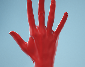 3D Standard Pose Realistic Hand Model 02