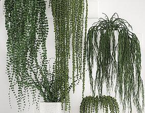 3D model Vertical gardening on wall shelves 62