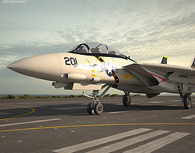 Grumman F-14 Tomcat army 3D model