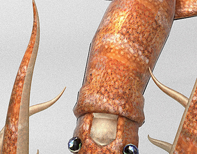 Squid 3D model rigged
