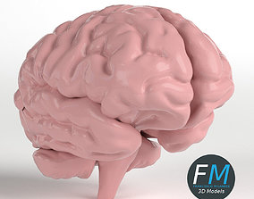 Anatomy - Human Brain 3D model