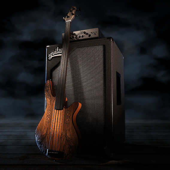 Rob Allen Mb-2 Fretless Bass, Aguilar SL 212 Cabinet and Tone Hammer 500 Bass Head