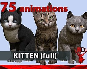 Kitten full 3D model animated