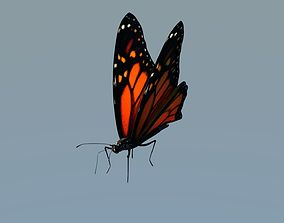 3D model Monarch Butterfly Animated Rigged